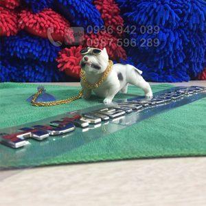 Chó để taplo ô tô Bulldog